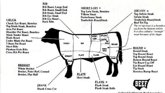 Diagram Beef Cuts Products Beef2live